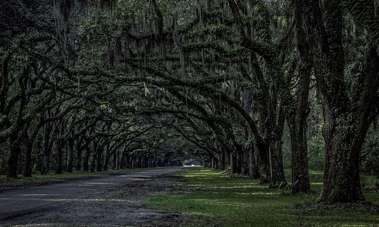 Savannah Georgia fairytale destinations